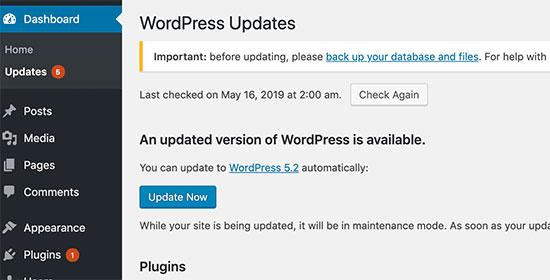 wprdpresss update