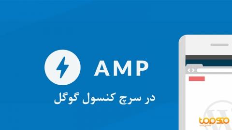 گزارشات AMP