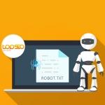 فایل robots.txt چیست و چه اهمیتی دارد؟ به همراه روش ساخت و استفاده