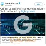 """گوگل: مشکل لغو شدن ایندکس سایت ها برطرف شد. مشکل بر اثر یک """"مشکل فنی"""" بوده است!"""